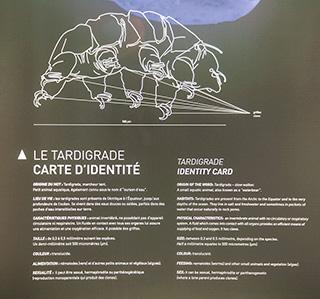 музей льда в Le Montenvers