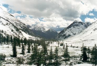 долина р. Верхний Кураган. Алтай