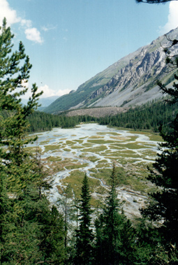 разлив реки Кони-Айры. Катунские белки, Алтай