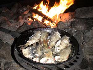 финляндия рыба