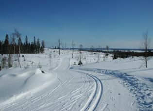 Вуокатти беговые лыжи
