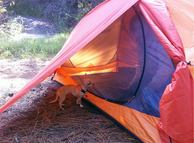 Marmot Ajax 2P tent