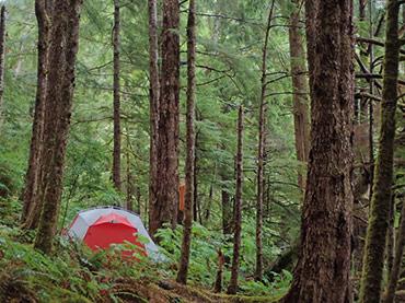 палатка big agnes вентиляция